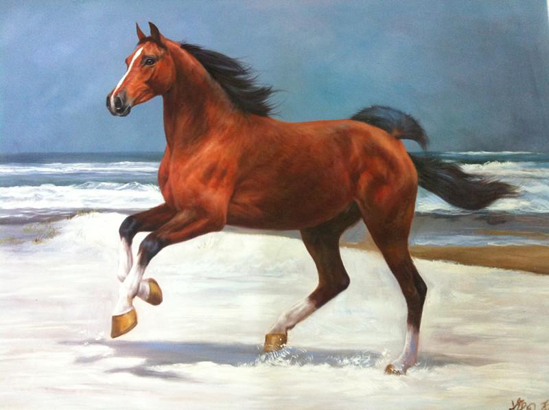 青岛方言中的 马